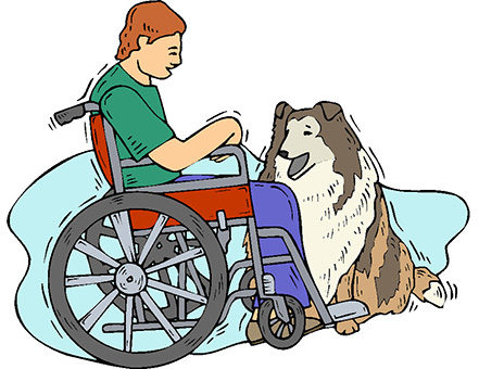 Qué beneficios aporta una mascota a las personas con discapacidad